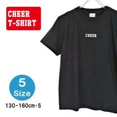 cht0112